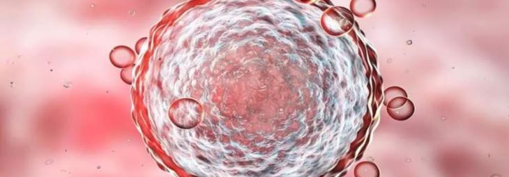 Non-altered birth cord cells boost survival of critically ill COVID-19 patients